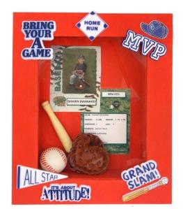 Baseball Shadow Box